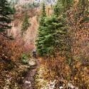 Hil Trail