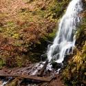 Faby Falls