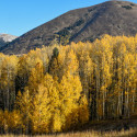 Aspens Mountain