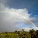 I Sky Rainbow